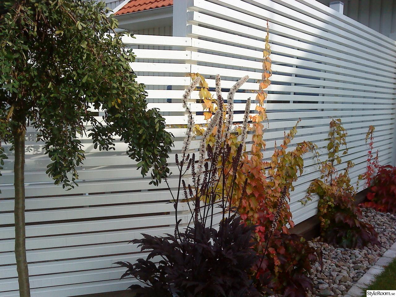 Liggande ribbor. | Staket | Pinterest | Garden screening, Fences ... : snygga staket : Staket