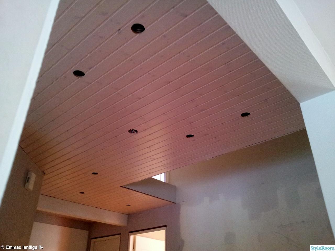 Bild på tak/spotlight   toalett m dusch / hallen av svampbob
