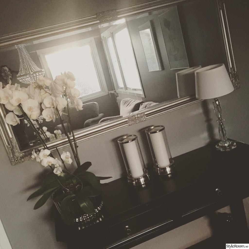 Bild på mörkt golv   vardagsrum av fialiten