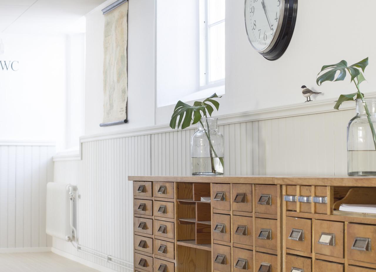 Växter - Inspiration och idéer till ditt hem