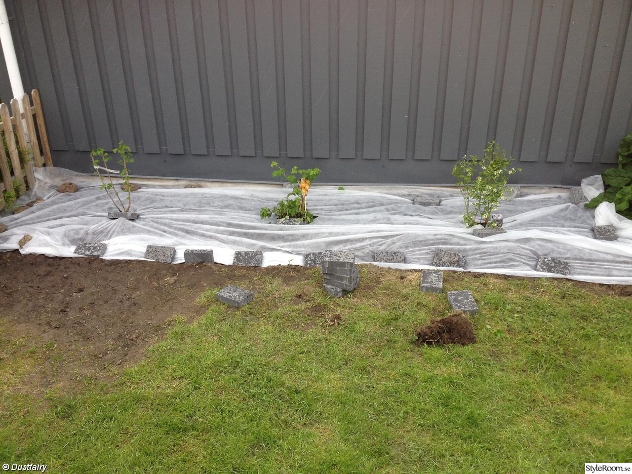 Gräva trädgård   inspiration och idéer till ditt hem