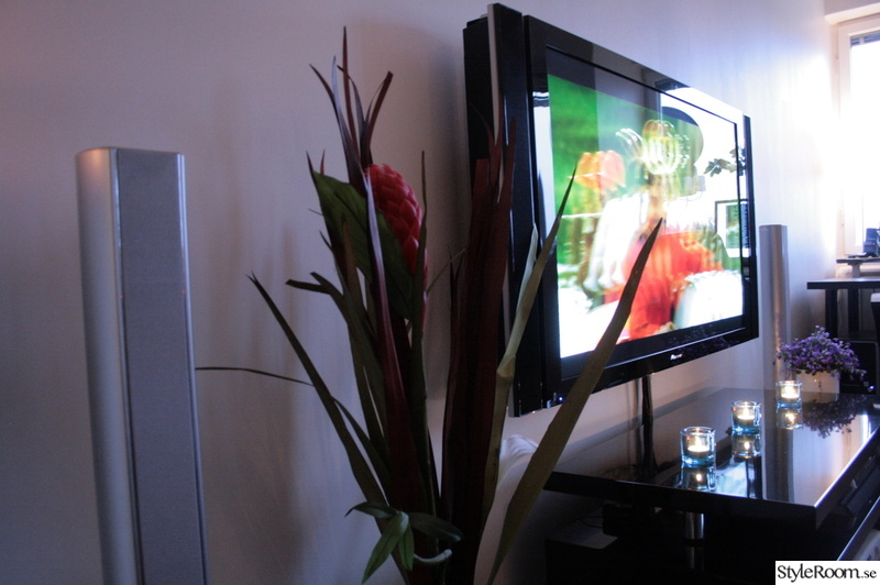 blommor,tv,tvbänk