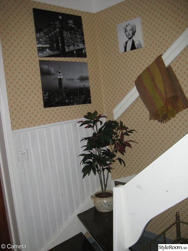 panel,trappa,anno,panelskiva,gammelsvensk tapet