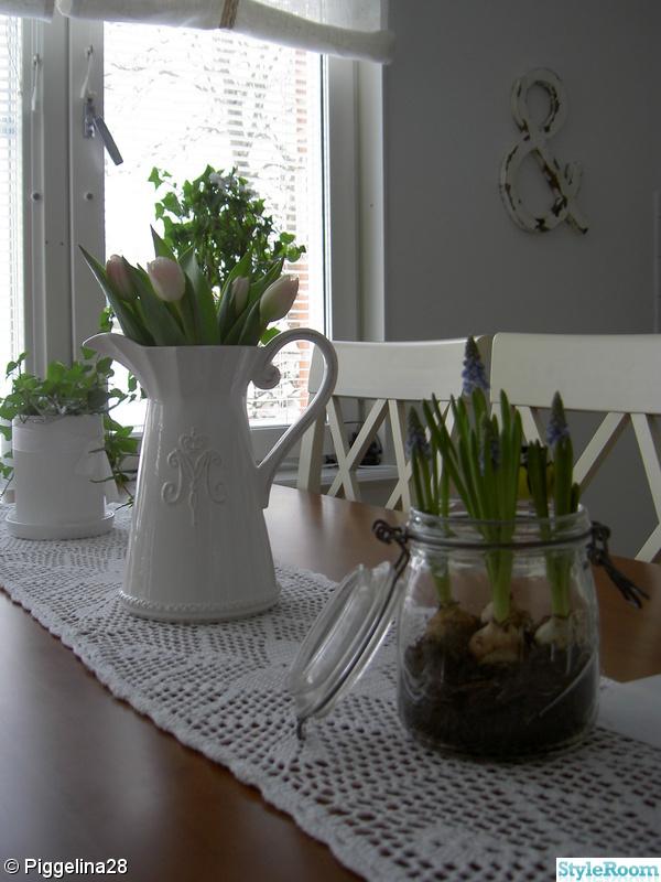 tulpaner,burk,miljögården,pärlhyacint