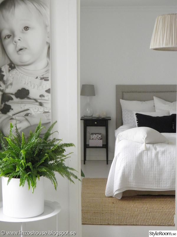 sovrum,överkast,krukväxt,taklampa,matta