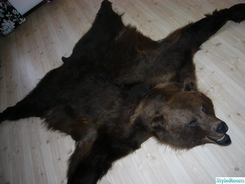björnskinn
