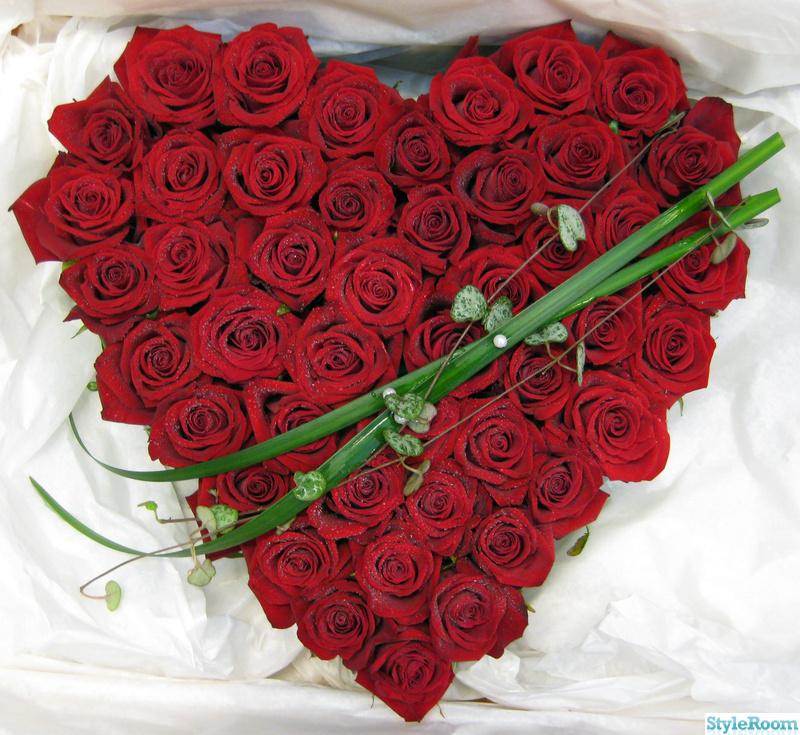 hjärta,rosor