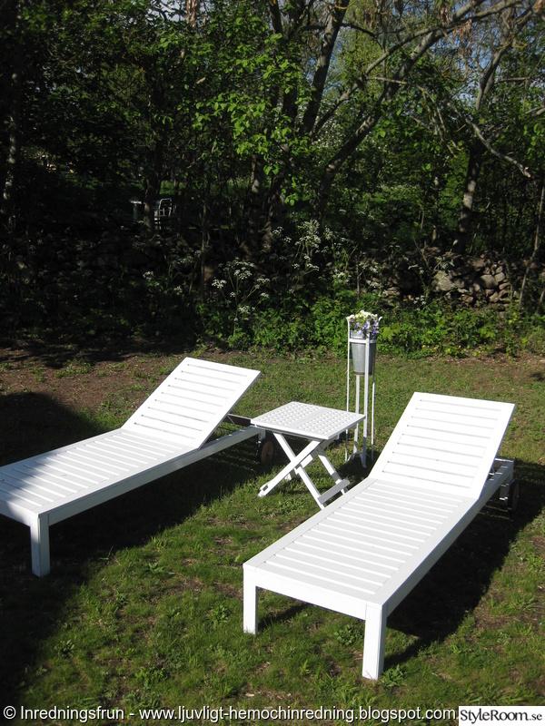 trädgård,sommar