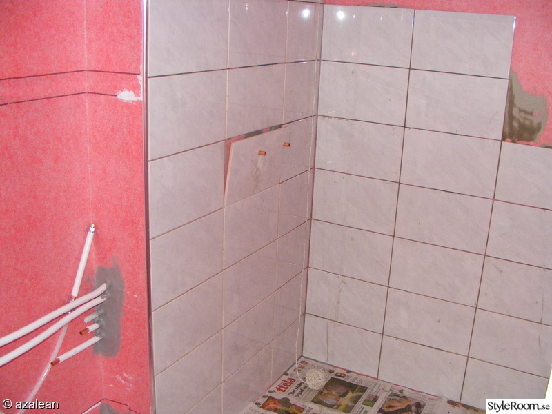 duschhörnan