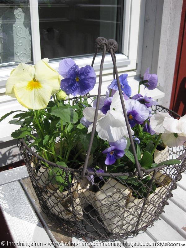 balkong,blommor,trädgård