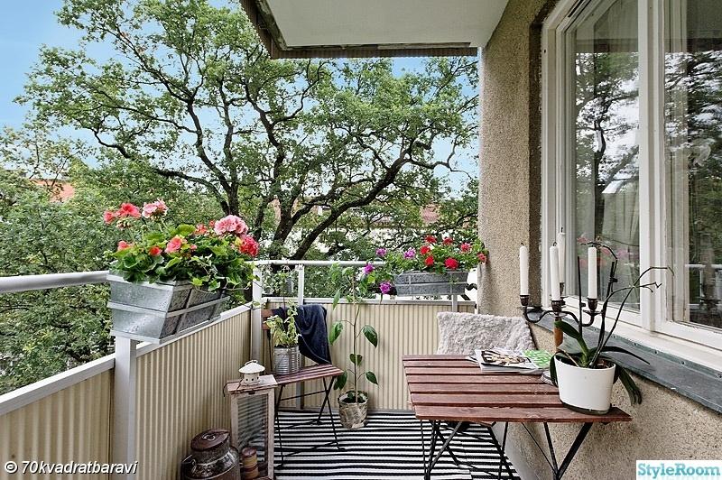 växter,balkong