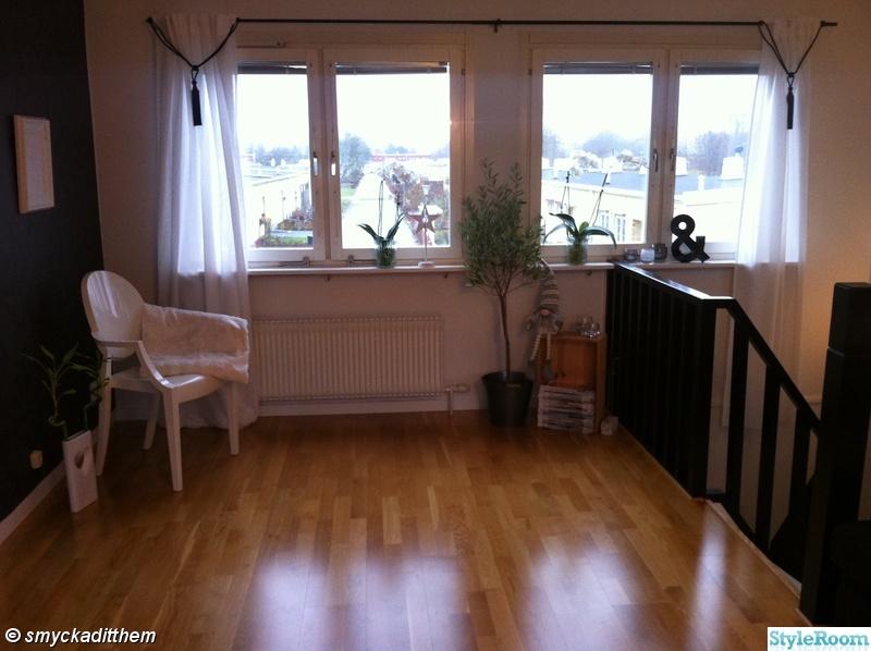 fönster,gardin,pläd,orkidee,tofs
