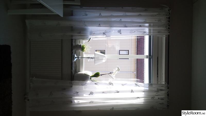 fönster,gardiner,blommor,krukor,lampa