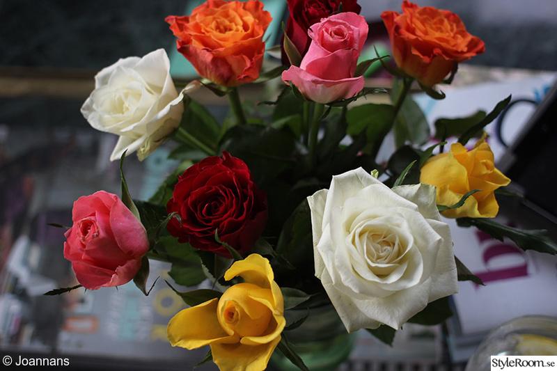 blommor,dekoration,ros,rosor