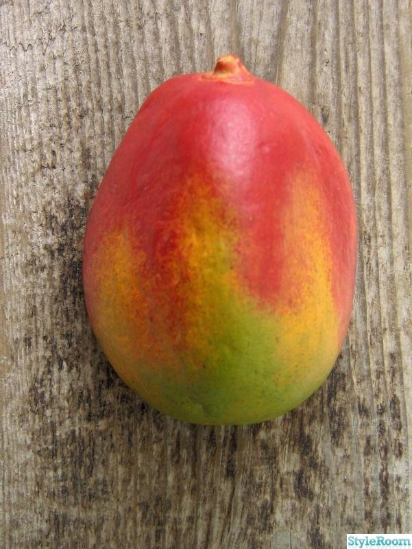 natur,frukt,tavla,sten,väggdekorationer