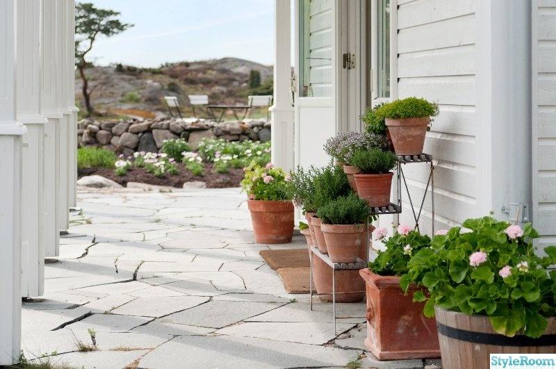 trädgård,blomkrukor,krukväxter