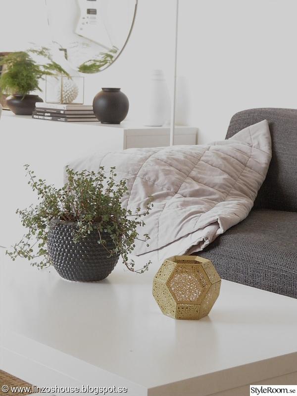 vardagsrum,soffbord,lykta,krukväxt,soffa