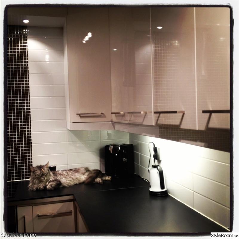 Koksrenovering Luckor : katt,hogblankt,hogblanka luckor,silvermosaik,vitt och svart kok