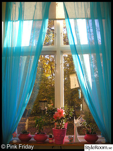 fönster,gardin,turkos