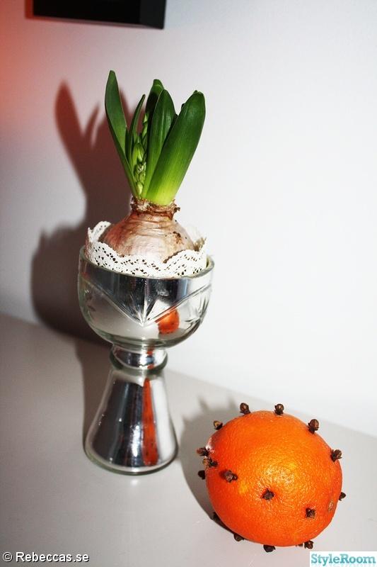 jul,sekretär,apelsin,spets,hyacint