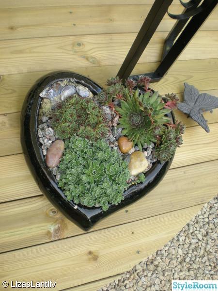 hjärta,taklök,kruka,trädgård