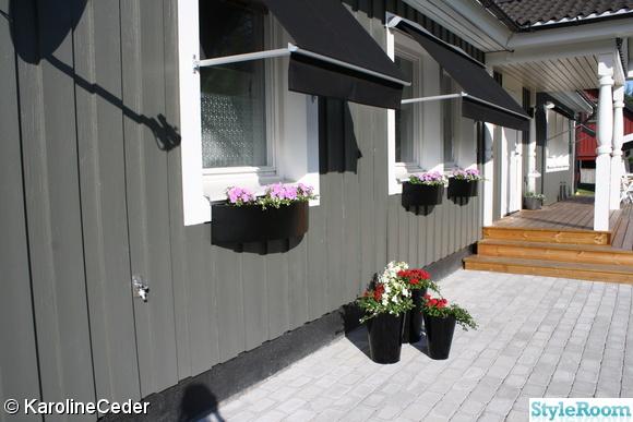blommor,blomkrukor,markisers