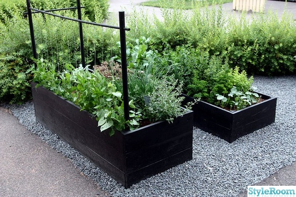 grus,odlingslådor,växtstöd,spaljé
