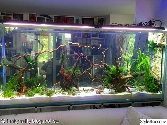 akvarium,rumsavdelare