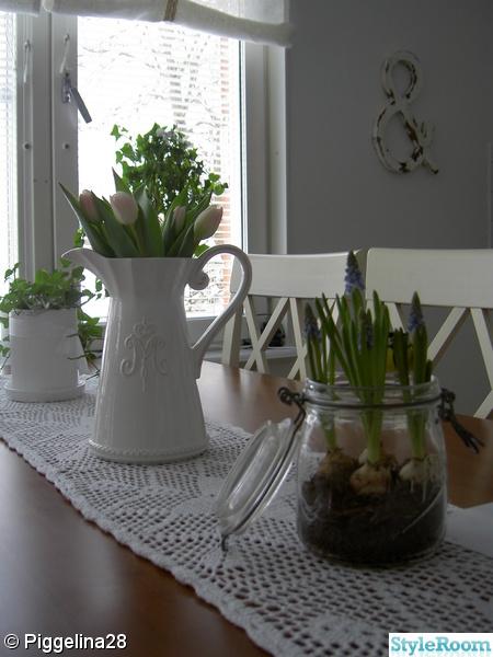 miljögården,tulpaner,pärlhyacint,burk