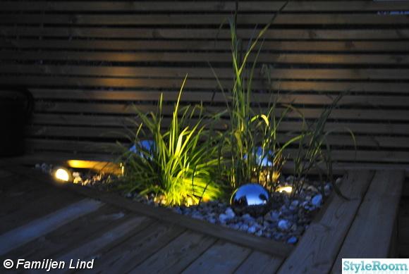 japanskt gräs,ledbelysning