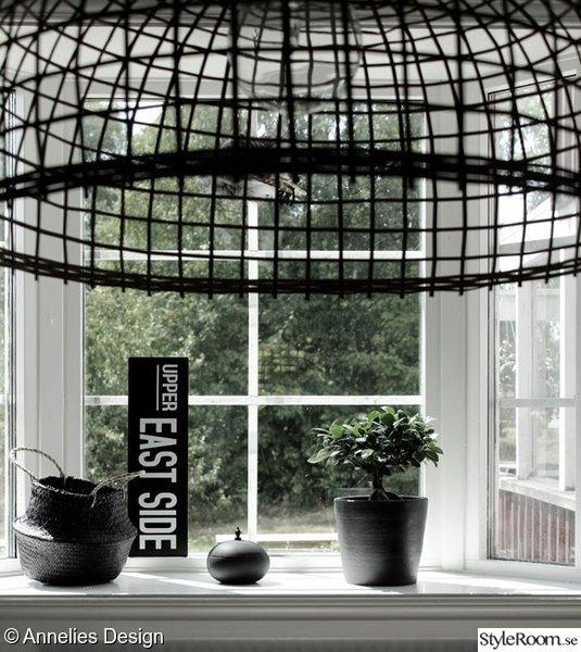 fönster,burspråk,citronfikus,plåtskylt,afroart korg