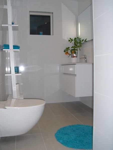 ... ,vägghängd wc,vägghängd kommod,grått klinker,grått klinker golv