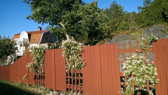 färgsättning,falurött,trädgård,staket