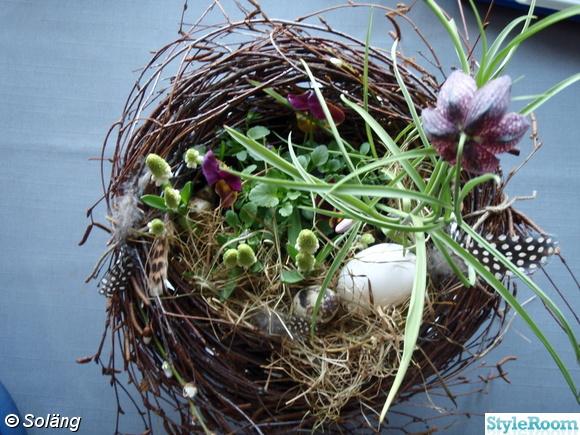 fågelbo,blommor,ägg