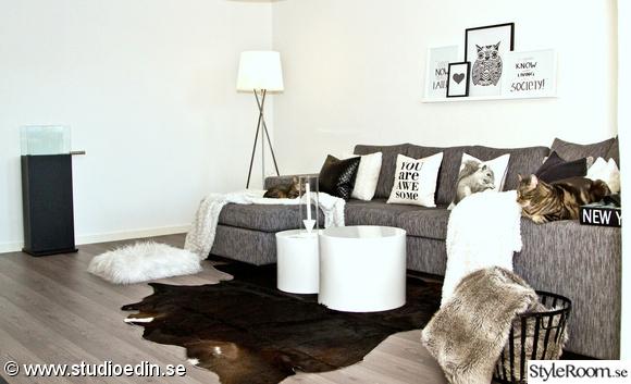 vardagsrum,pläd,soffa,matta,komatta