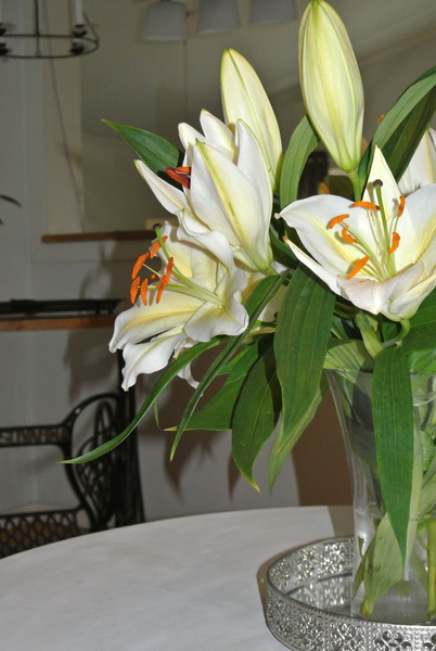 liljor,symaskinsunderrede,vardagsrum