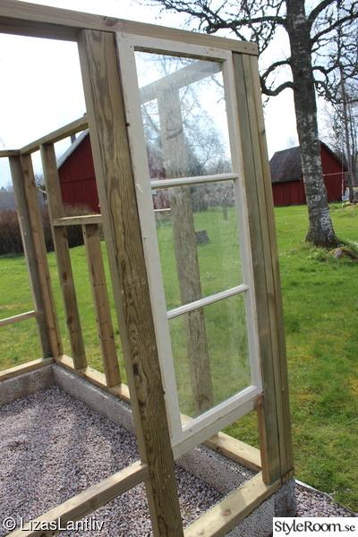 gamla fönster,växthus,återbruk,odling,köksträdgård
