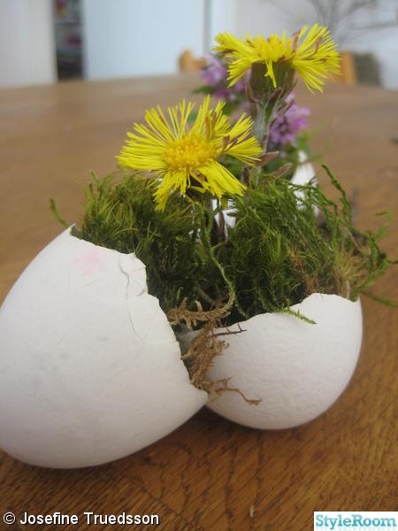 blomma bord stolar,blommor,ägg,äggskal,påsk