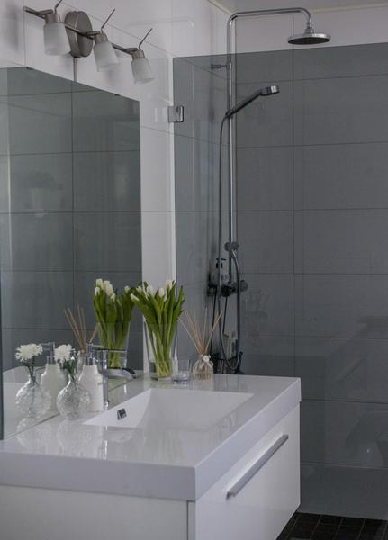 badrum,toalett,kommod,handfat,spegel