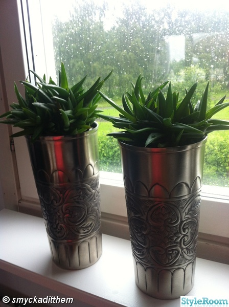 krukor,silver,växter,zbh,fönster