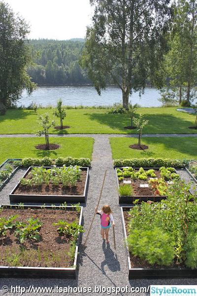 köksträdgård,trädgård