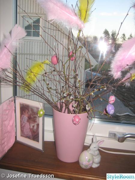 påskris,påsk,rosa