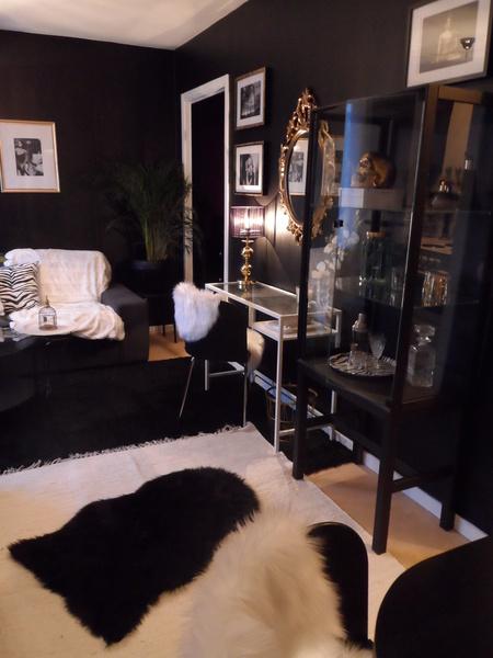 svart,vitt,guld,zebra,skinnfäll
