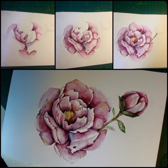 akvarell,talva,kort,pion,blomma