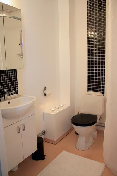lilltoa,efter renovering,efterbild,toalett,svart och vitt