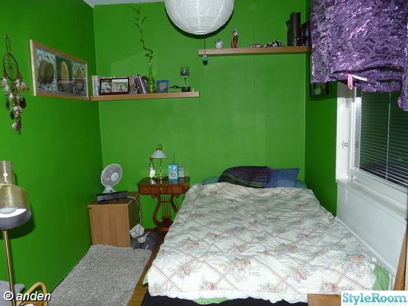 sovalkov,grönt,säng,vägghylla,hylla