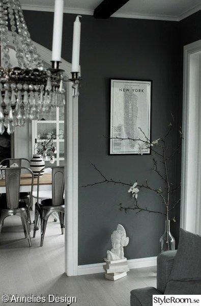 magnolia,gren,ta in naturen,vårkänsla,gråmålad vägg