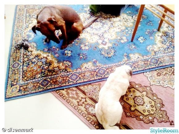 gammla mattor,klassiska mattor,omlott,vardagsrummet