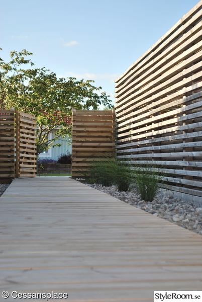 Trädgårdsgång med sjösten, prydnadsgräs och strandiris. Liggande staket