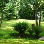 Inspiration för trädgård